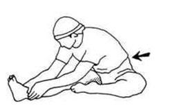 Упражнение второе. Растяжка поясницы и задней поверхности бедра