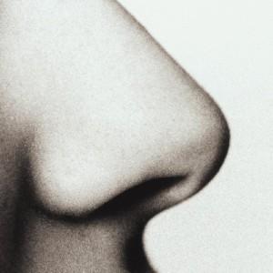 нос корки