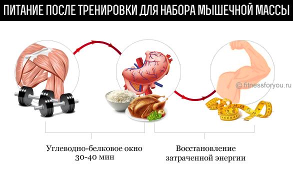 основы правильного питания для похудения в схемах