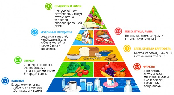 Диеты звезд России  фото до и после для похудения