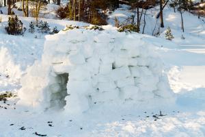 Снежная хижина игра
